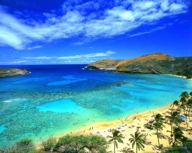 hawaiian-vacation-packages-1024x819 (1)
